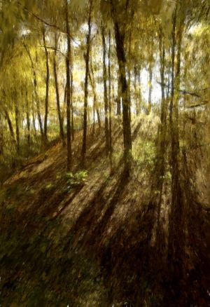 Woodland Shadows - Impressionist - Copy.jpg