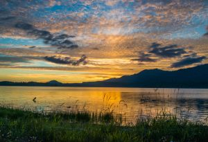 01 Lake Quinault Sunset - Best in Show