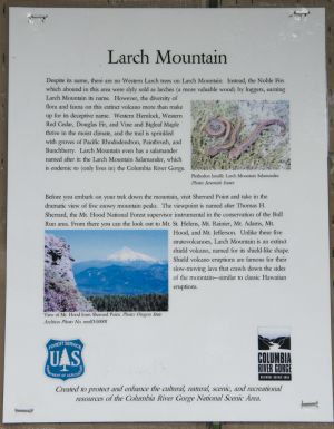 37 Larch Mountain